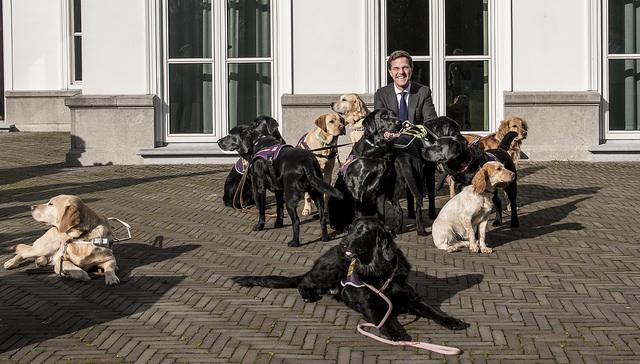 Minister-president Rutte bij het Catshuis, CC-Foto: Minister-president Rutte